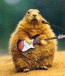 На каких струнах лучше играть на гитаре?