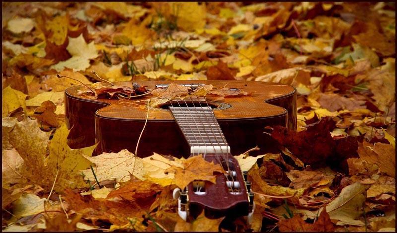 Осенние песни под гитару, текст, аккорды, видео разбор